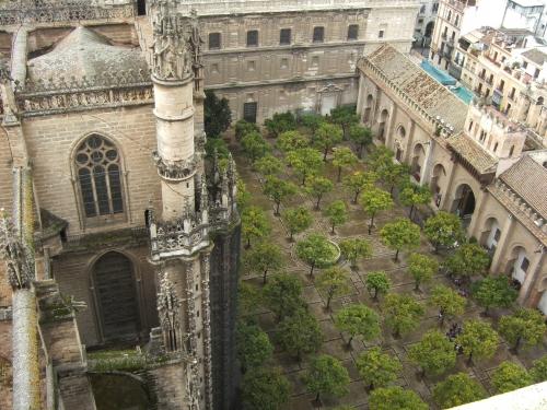 cour des orangers (4) blog de REJOSE.JPG