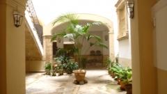 palma patio (3).JPG